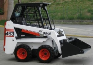 bobcat-463